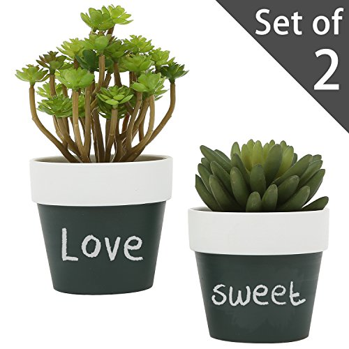 3-inch-small-ceramic-chalkboard-succulent-plant-pots-flower-vase-set-of-2-black-white