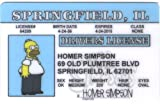 Homer Simpson Driver License ID