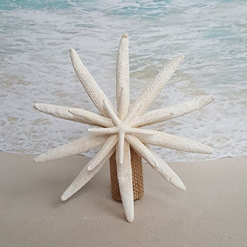 """Starfish Tree Topper - 6-8"""", 8-10"""" or 10-"""