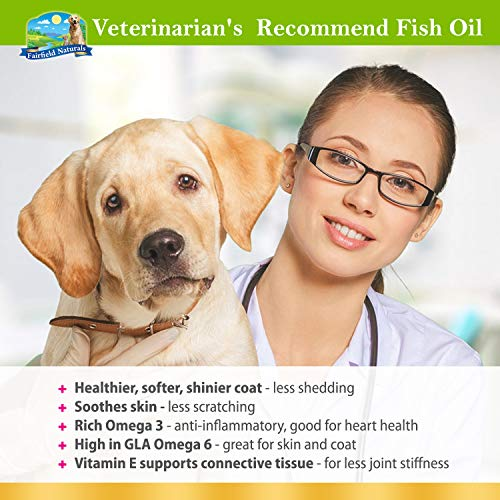 Buy salmon oil for dogs