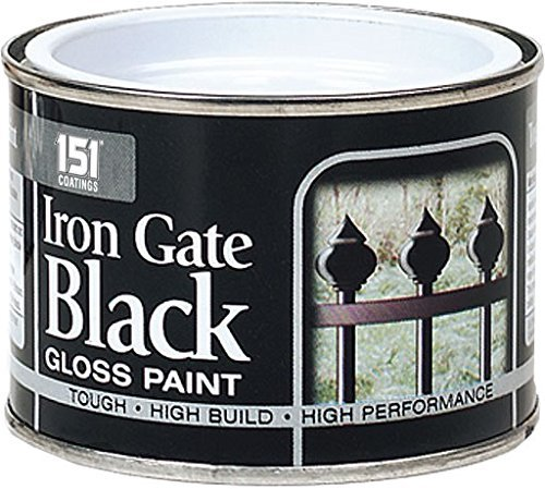 Iron Gate Black Gloss Paint - 180ml