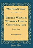Amazon / Forgotten Books: White s Winning Wonders, Dahlia Creations, 1927 True to Name Classic Reprint (White Floral Company)