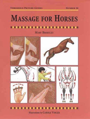 Massage for Horses (Horse Massage)