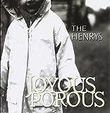 Joyous Porous