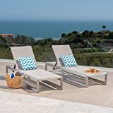 San LuisOutdoor Grey Mesh Chaise Lounge with Silver Finished Aluminum Frame (Set of 2)