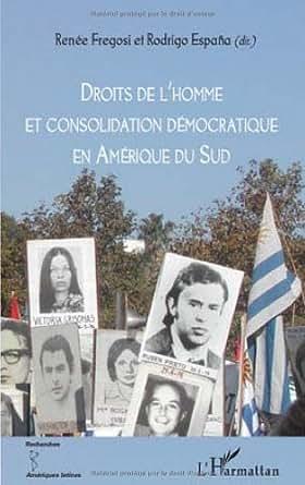 Droits de l'homme et consolidation démocratique en Amérique du Sud - Renée Fregosi,Rodrigo Espana