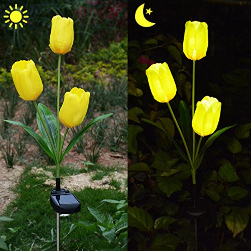 Tulip Garden Lights - 2
