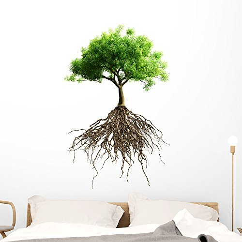 (Wallmonkeys Tree with Roots Wall Decal Peel and Stick Graphic (48 in H x 48 in W) WM368001)