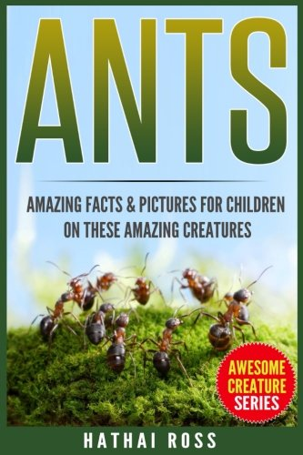 fun facts about ants for preschoolers ants amazing facts amp pictures for children on these 219