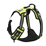 EXPAWLORER Best No-Pull Dog Harness. 3M Reflective Outdoor Adventure Pet Vest with Handle. 3 Stylish Colors and 5 Sizes.