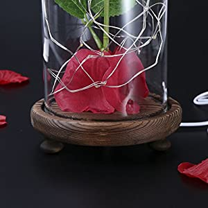 LEDMOMO Red Silk Rose and Led Light with Fallen Petals in a Glass Dome on A Wooden Base Artificial Rose Flowers USB Night Light Gift for Valentine's Day Anniversary Wedding Birthday 6