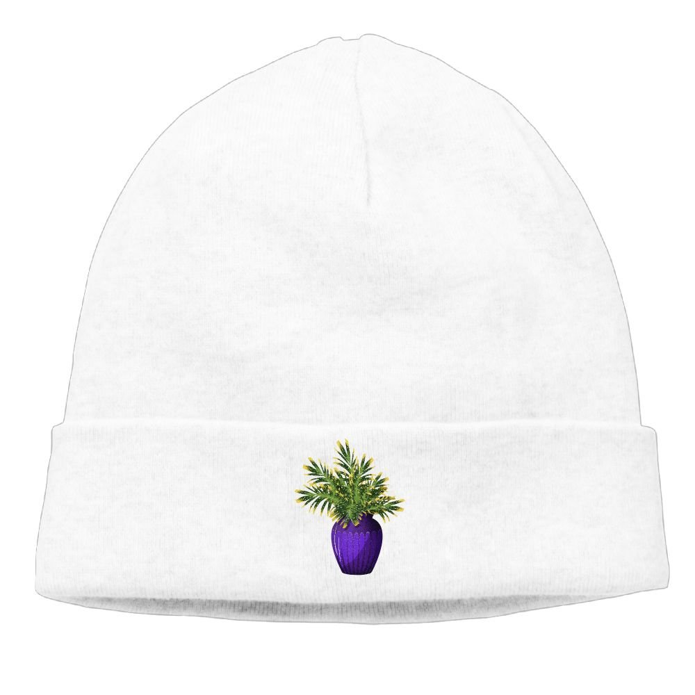Raining Sunlight Unisex Fashion Bonsai Tree Plant Graphic Casual Flexible Winter Hats/Ski Cap/Beanie/Skully Hat Cap