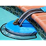 Solstice by International Leisure Products Froglog Tm