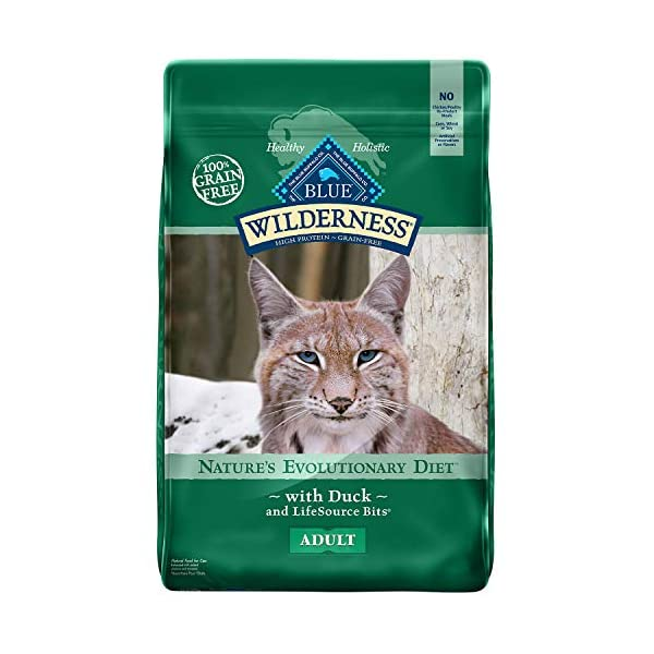 Blue Buffalo Wilderness High Protein Grain Free, Natural Adult Dry Cat Food, Chicken 1