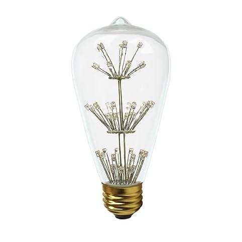 Dr.Lamp ST19 1.5W Vintage Edison Lights,Retro Style Warm White 2200K  Decorative