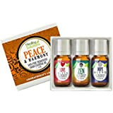 Healing Solutions Peace & Harmony Blends Set 100% Pure, Best Therapeutic Grade Essential Oil Kit - 3/10mL (Love, Hope, and Ze