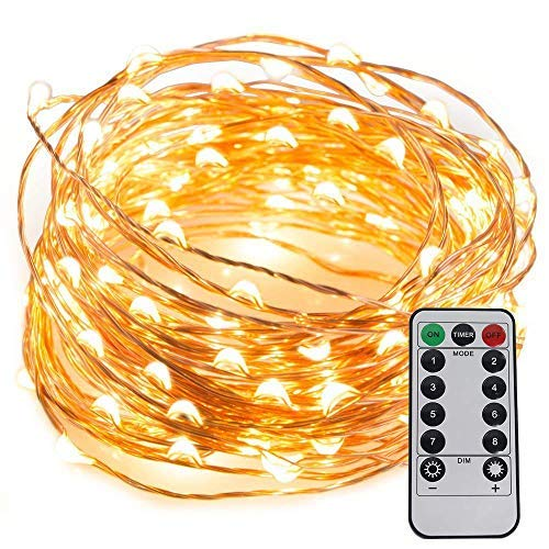 LED String Lights USB Powered 33ft 100LEDs with Remote Control,Waterproof Decorative Lights for Bedroom,Patio,Parties,UL588 and CE Approved [並行輸入品] B07R7RDTSD