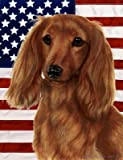 Best of Breed Dachshund Longhaired Red Patriotic II Large Flags Review