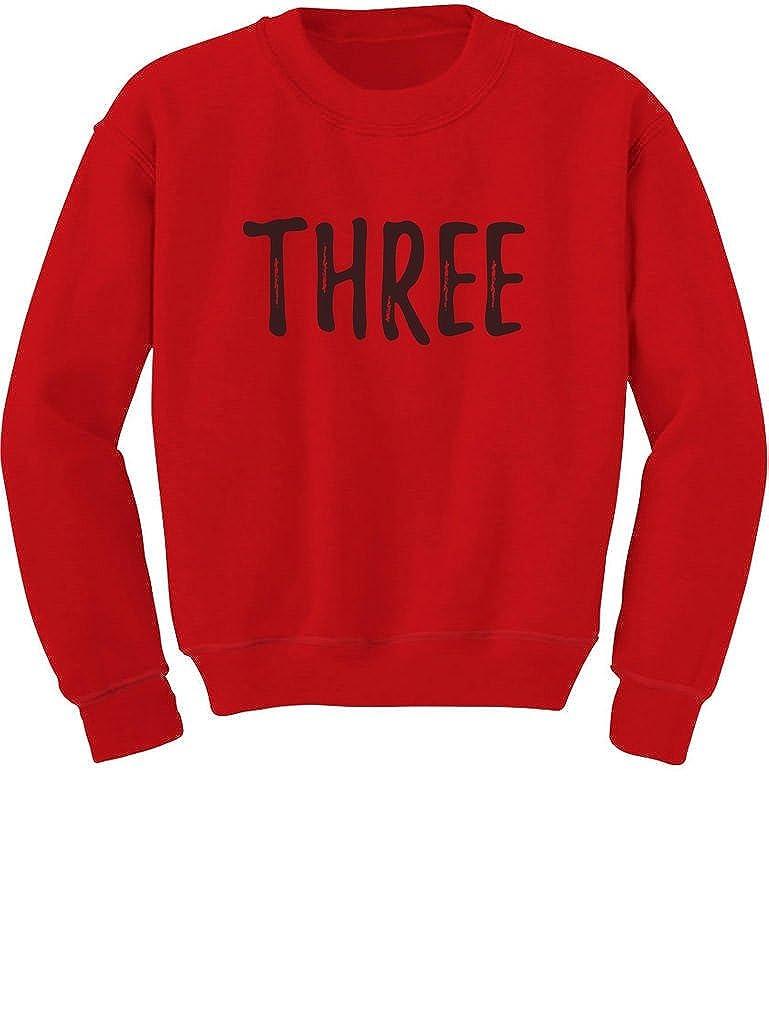 Tstars 3rd Birthday Gift for Three Year Old Child Toddler//Kids Sweatshirt