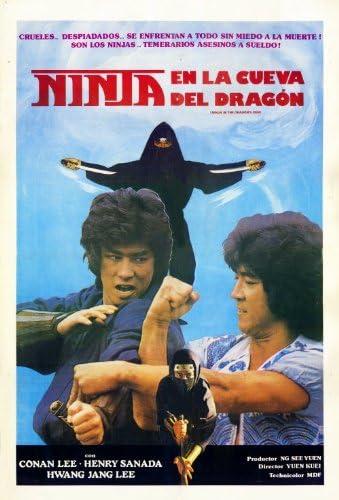 Amazon.com: Ninja in the Dragons Den Poster Movie 11x17 ...