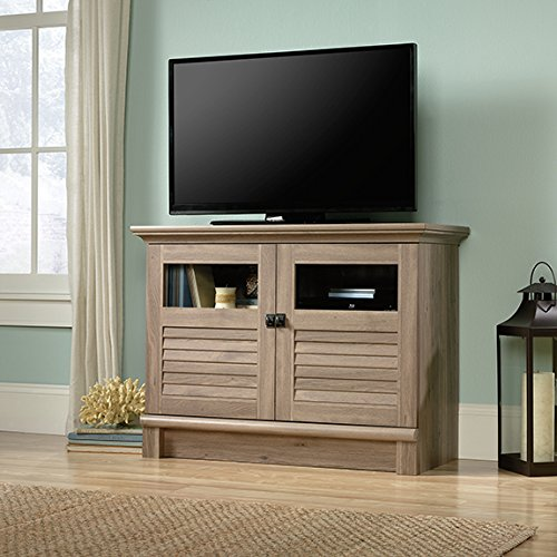 Oak Finish Game - Sauder 422397 Harbor View Tv/Accent Cabinet, Salt Oak Finish