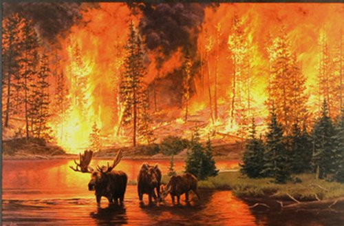 Legacy Jim Tschetter 30x20 inche Lithograph Art Print Moose Wildlife Forest Fire