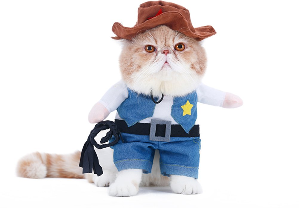 WORDERFUL Cowboy Dog Costume with Hat Dog Clothes Suit Halloween Costumes for Cat and Puppy (M)
