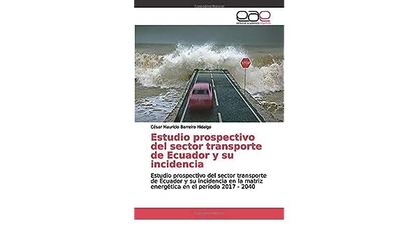 Estudio prospectivo del sector transporte de Ecuador y su incidencia: Estudio prospectivo del sector transporte de Ecuador y su incidencia en la matriz energética en el periodo 2017 - 2040: Amazon.es: Barreiro