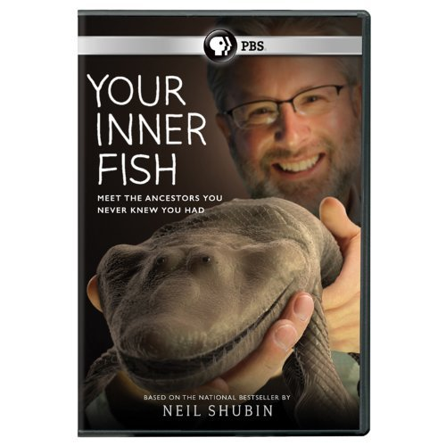 Your Inner Fish [DVD] [Region 1] [US Import] [NTSC] (Fish Inner Your Video)