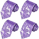 KissTies 4PCS Ties For Men Iris Purple Wedding Neckties + 1 Magnetic Box