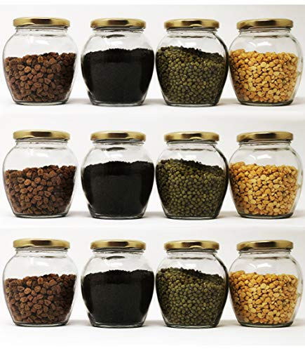 Cloudsell Matka Shape Glass Jars with Airtight Metal Lid for Spice, Jam, Honey & Decoration Craft Work, 350 ml, Set of 12 Price & Reviews