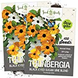 Seed Needs, Black Eyed Susan Vine Mix