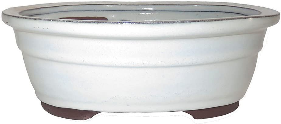 "Brussel's 10"" Oval Bonsai Glazed Ceramic Pot (Large, New Cream)"