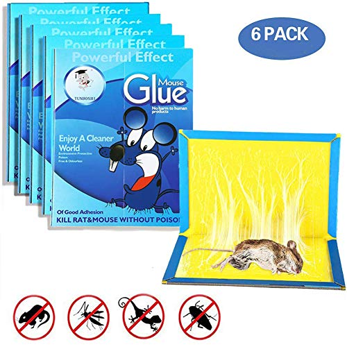 PROEXME Best MiceRat Glue Trap, [Super Sticky & Irresistible Peanut Butter Scented Glue Board] Perfect Use for Indoor and Outdoor - 6 Packs