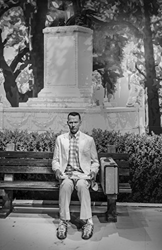 8 x 12 Black and White Photo of Likeness of Tom Hanks sits at the famous bench from the movie