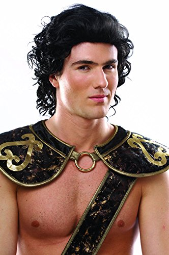 Costume Culture Men's Hunk Wig, Black, One Size -