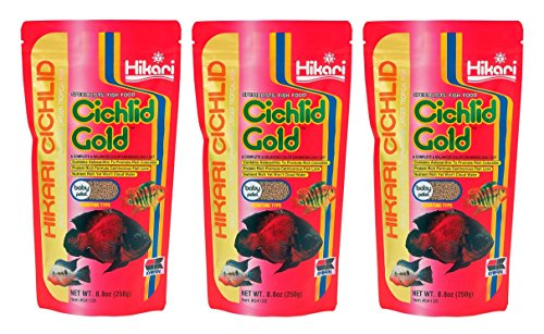 Hikari Cichlid Gold Floating Baby Pellets for Pets, 8.8-Ounce (3 Pack)