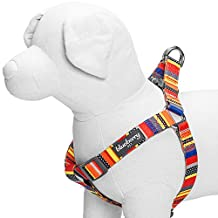 """Blueberry Pet Step-in Nautical Flags Inspired Designer Dog Harness, Chest Girth 16.5"""" - 21.5"""", Small, Adjustable Harnesses for Dogs"""