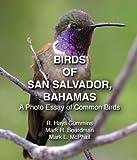 Birds of San Salvador, Bahamas: A Photo Essay of Common Birds
