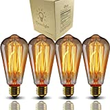 E26 Edison bulbs 40 Watt Dimmable St64- Industrial Pendant...