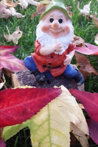 Garden Gnome Journal: 150 page lined notebook/diary