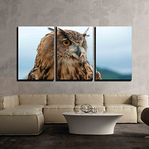 wall26 - 3 Piece Canvas Wall Art - Eurasian Eagle Owl - Modern Home Decor Stretched and Framed Ready to Hang - 16