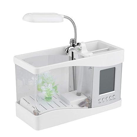 Amazon.com: Aquarium - Mini tanque de peces con bomba de ...