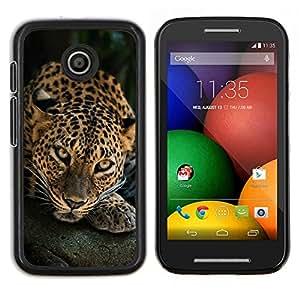Caucho caso de Shell duro de la cubierta de accesorios de protección BY RAYDREAMMM - Motorola Moto E - Leopardo del gato grande Felino naturaleza animal
