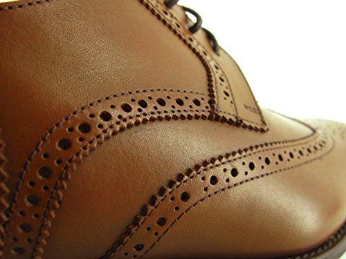 Pc1605ac Pierre Marron Camel Chaussures Derby Cardin aUqtAwU7