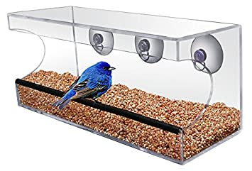 Comedero transparente - Ventana ventosa Comedero, niños y gatos les encantará. - Fácil de Limpiar - Comer Pájaros directamente Antes de Su Ventana: ...