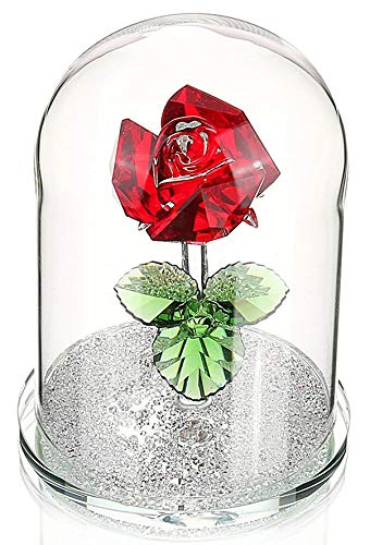 H&D Red Preserved Crystal Glass Rose Flower in Glass Dome Gift for Valentine's Day Anniversary Birthday