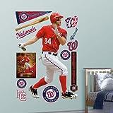 MLB Washington Nationals Bryce Harper Away Wall Graphics
