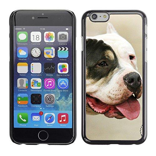 """Premio Sottile Slim Cassa Custodia Case Cover Shell // F00017172 Chien // Apple iPhone 6 6S 6G PLUS 5.5"""""""