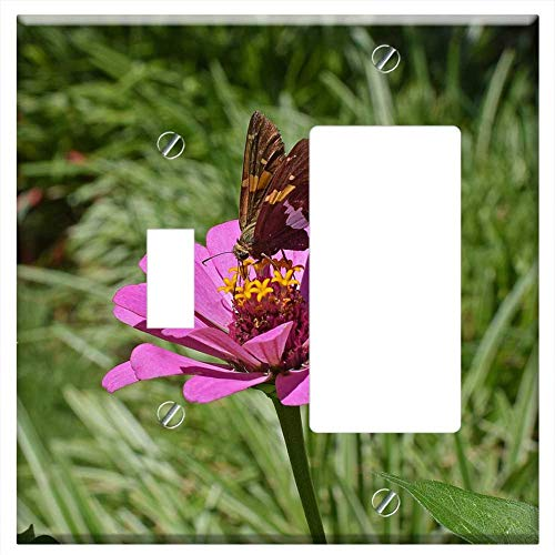 1-Toggle 1-Rocker/GFCI Combination Wall Plate Cover - Silver-Spotted Skipper On Zinnia Butterfly In ()
